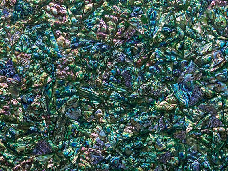 Shellstone: Green Abalone 3D