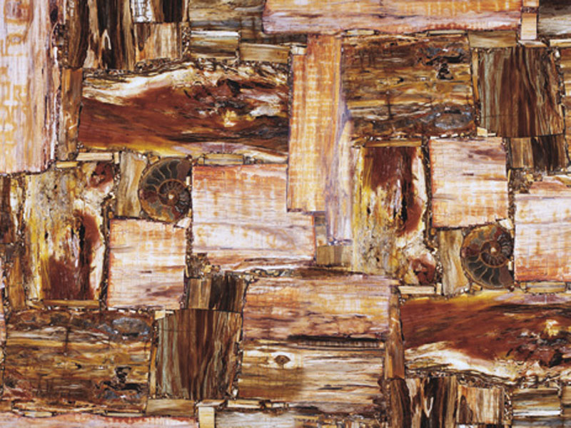 Precioustone - Retro Petrifield Wood
