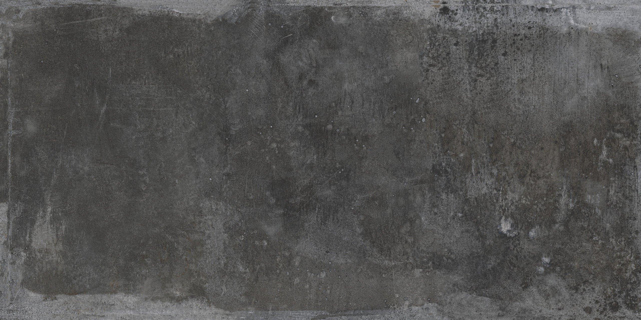Silene Ferro Nero