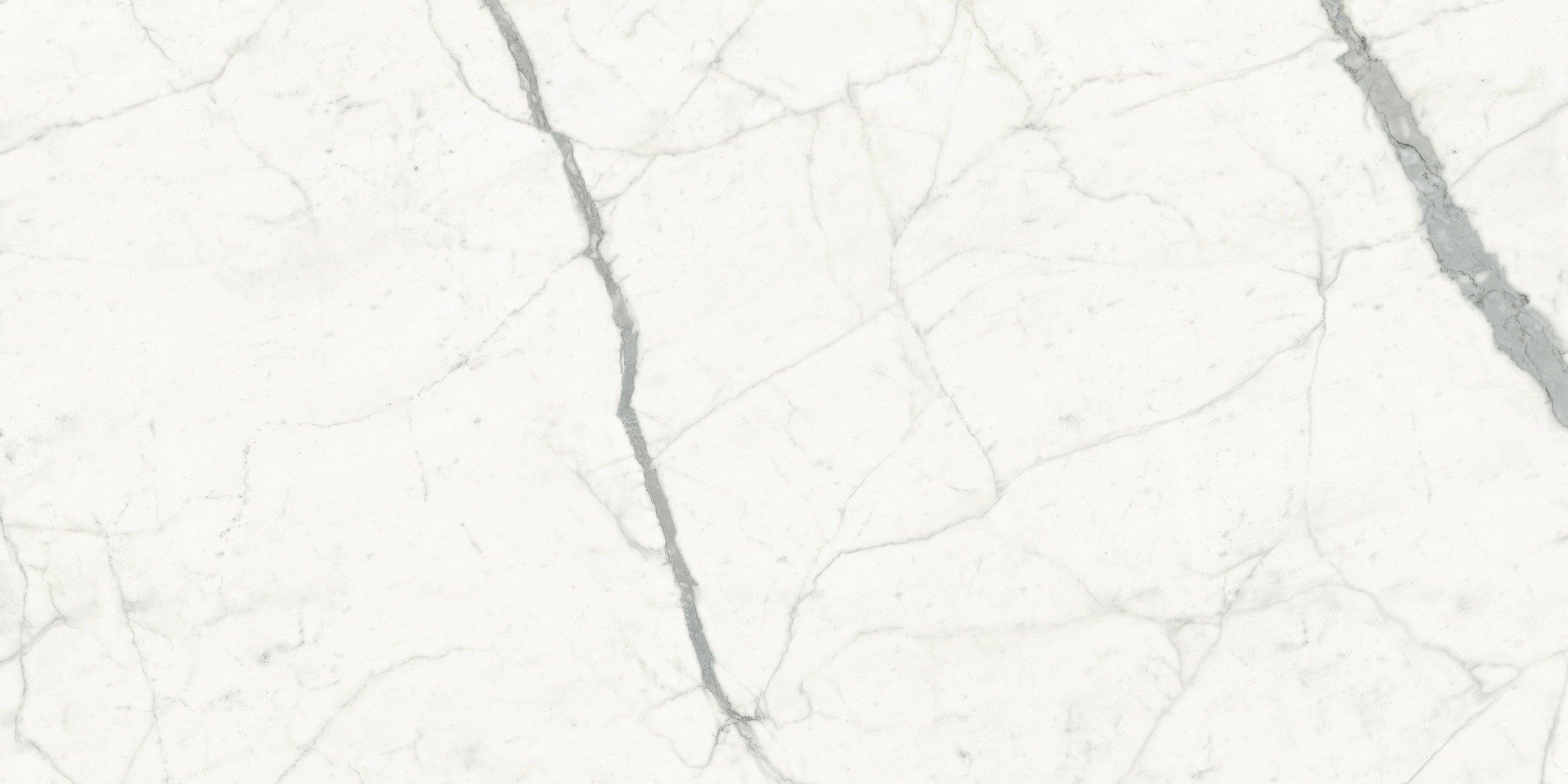 Silene Marmi Bianco Venato