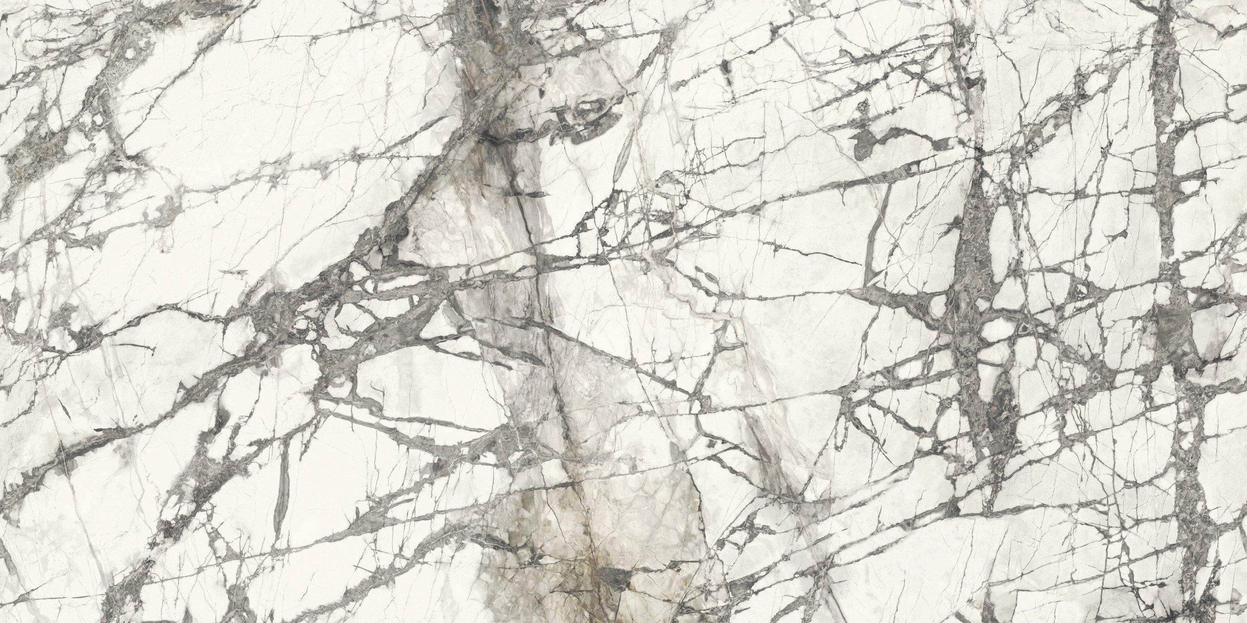 Silene Marmi Calacatta Grey