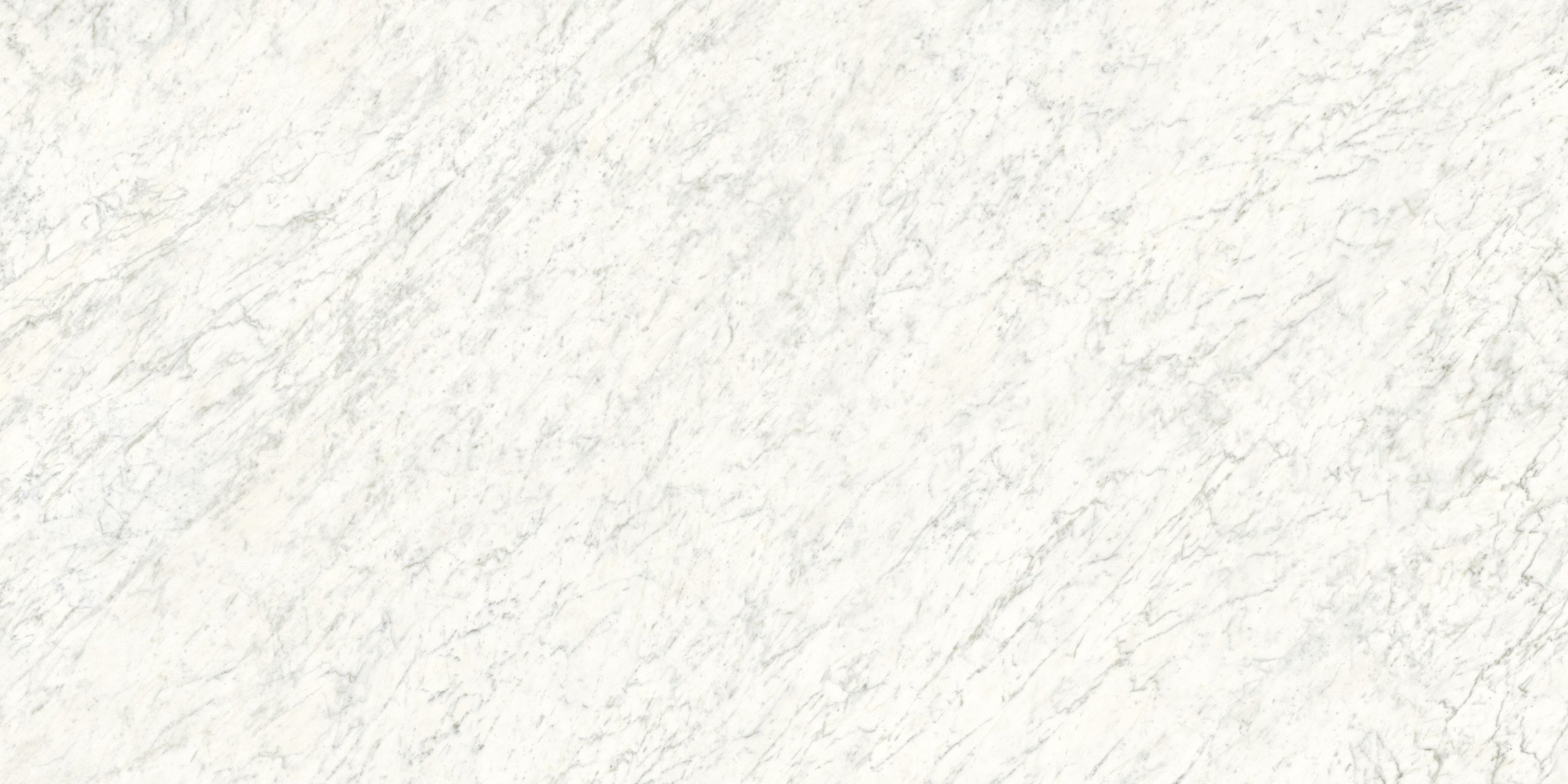 Silene Marmi Veined White